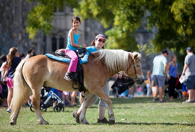 Enjoy a pony ride and more at Sands Point Fall Festival