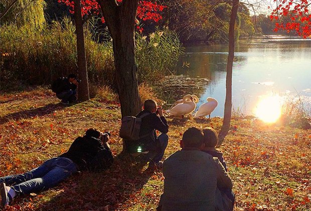 7 Easy Fall Family Hikes in NYC