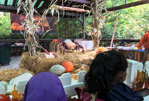 The ongoing Boo at the Zoo in the Bronx is the perfect way to enjoy the season with preschooler fun like daily costume parades and hay mazes